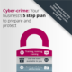 Free Cyber Crime guide for business owners